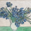 Van Gogh: Irises and Roses at the Met Museum – New York